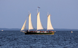 schooner cruise milford oyster festival